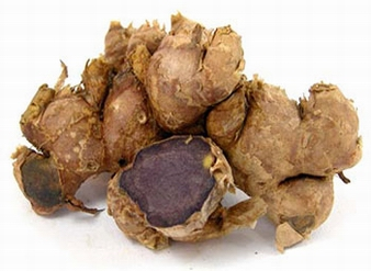 Black Ginger Extract, Kaempferia parviflora Extract, Thai bl