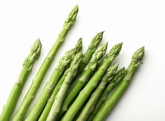 Asparagus Extract, Asparagus officinalis Extract
