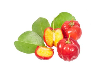 Acerola cherry Extract, West indian cherry Extract,Malpighi